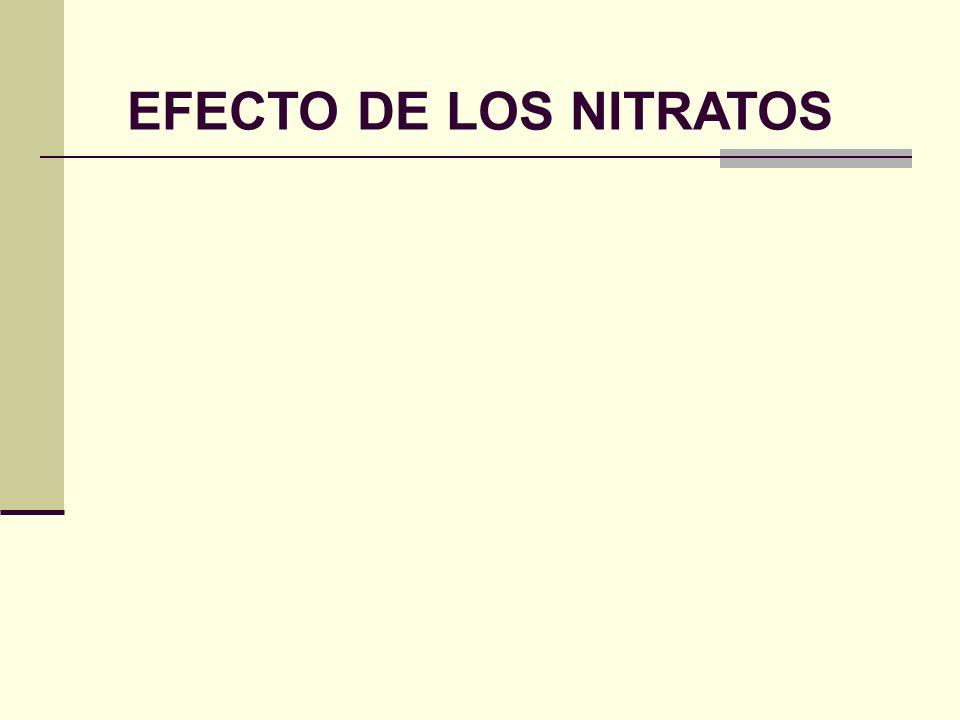 EFECTO DE LOS NITRATOS