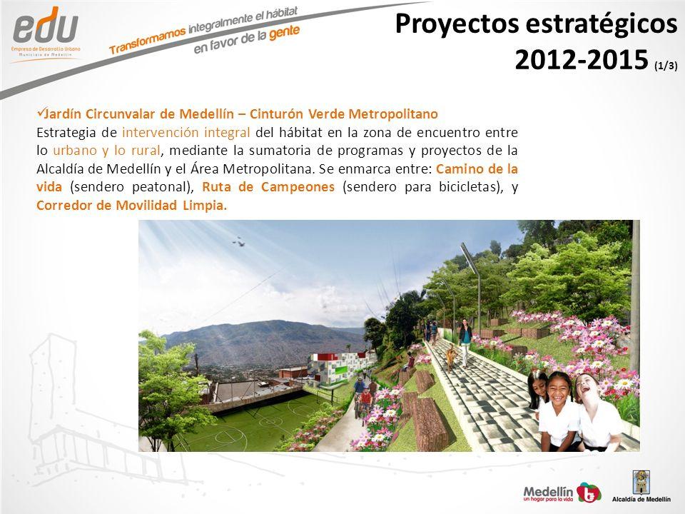 Proyectos estratégicos 2012-2015 (1/3)