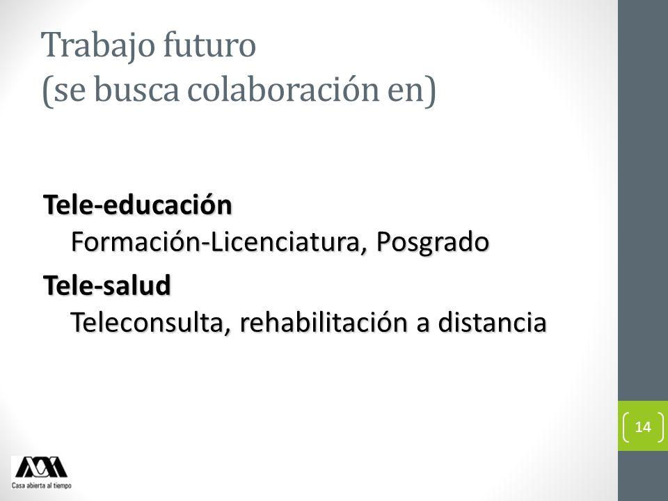 Trabajo futuro (se busca colaboración en)
