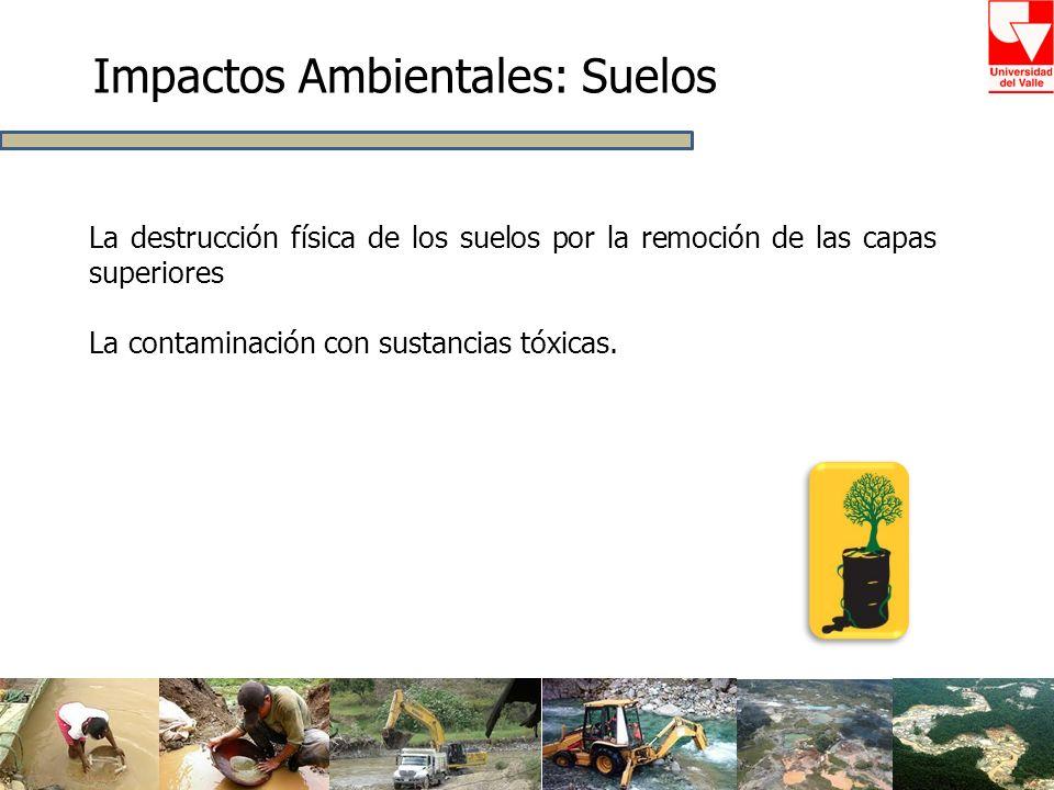 Impactos Ambientales: Suelos