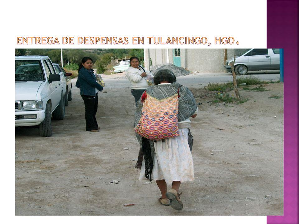 Entrega de despensas en Tulancingo, Hgo.