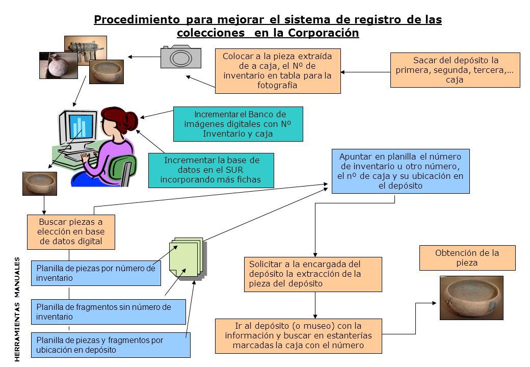 Procedimiento para mejorar el sistema de registro de las colecciones en la Corporación