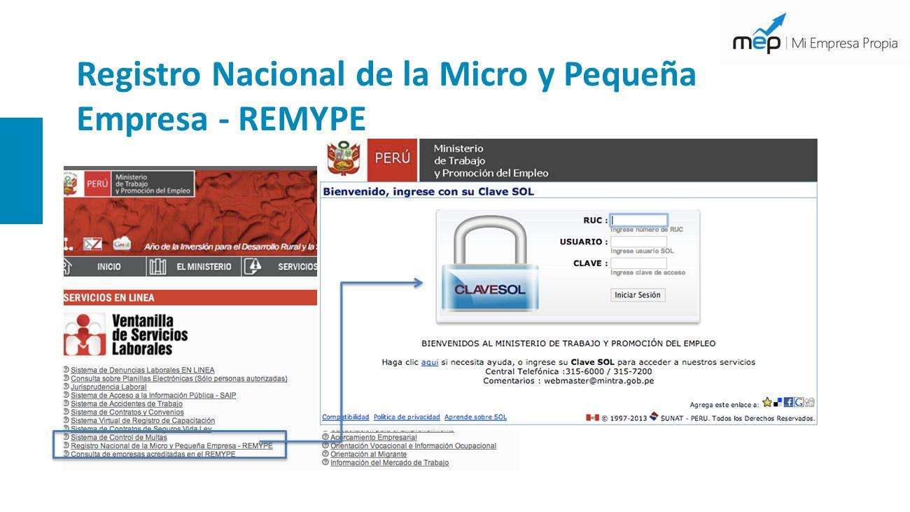 Registro Nacional de la Micro y Pequeña Empresa - REMYPE