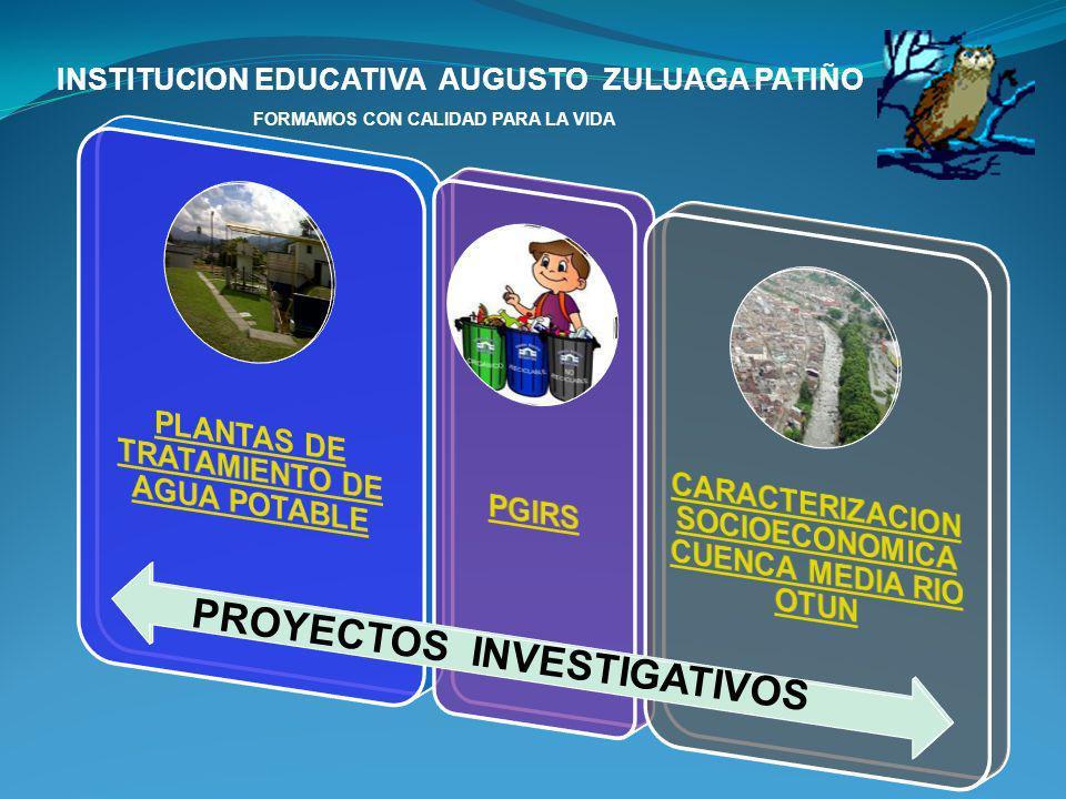 PROYECTOS INVESTIGATIVOS