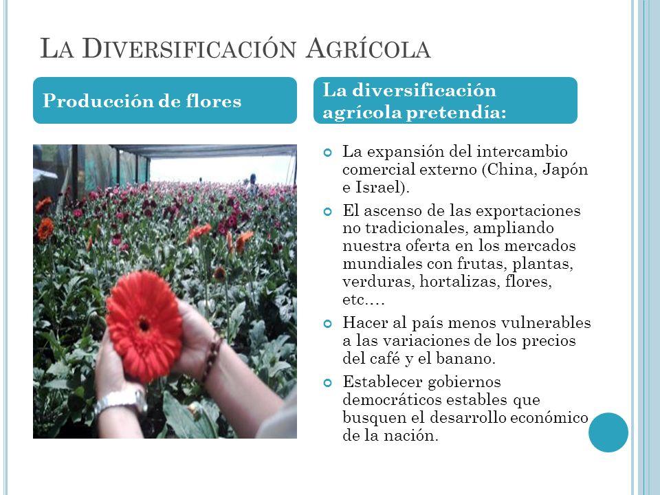 La Diversificación Agrícola