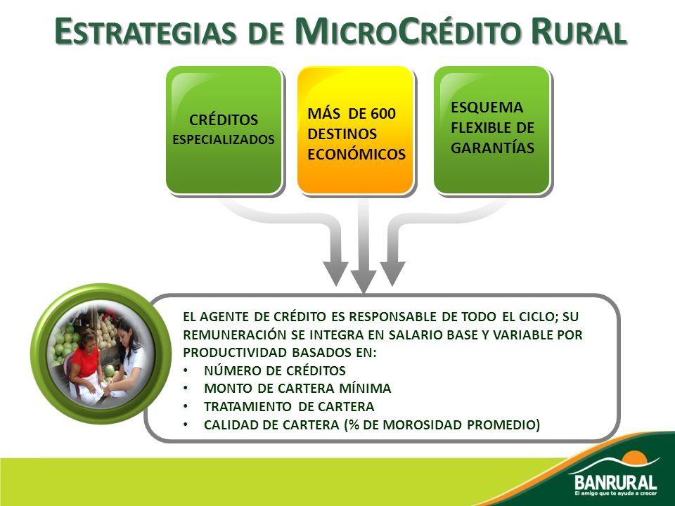Estrategias de MicroCrédito Rural