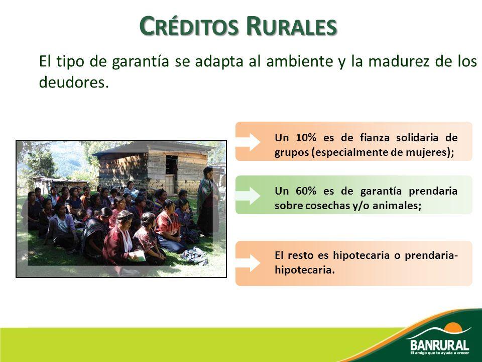 Créditos Rurales El tipo de garantía se adapta al ambiente y la madurez de los deudores.