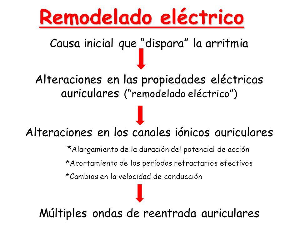 Remodelado eléctrico Causa inicial que dispara la arritmia