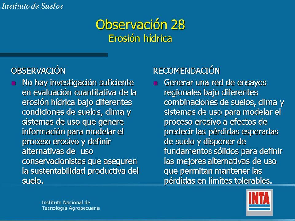 Observación 28 Erosión hídrica