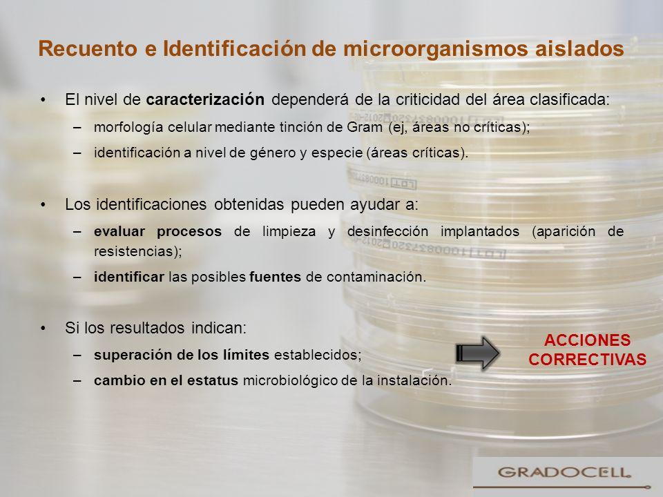 Recuento e Identificación de microorganismos aislados