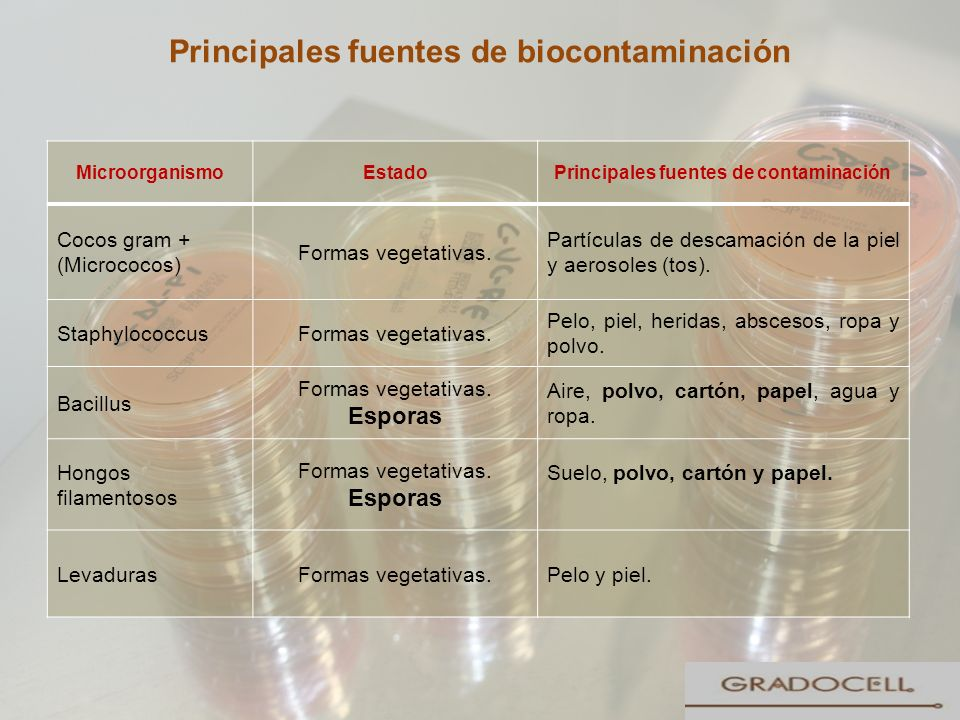 Principales fuentes de biocontaminación
