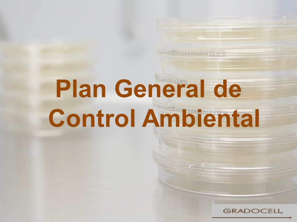 Plan General de Control Ambiental