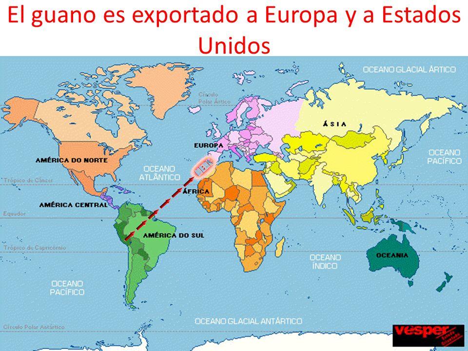 El guano es exportado a Europa y a Estados Unidos