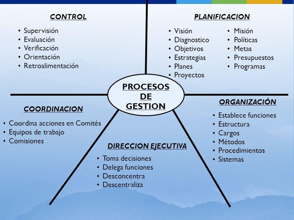 PROCESOS DE GESTION CONTROL Supervisión Evaluación Verificación