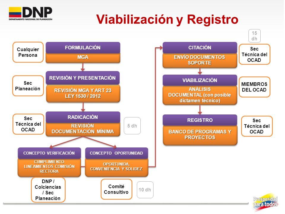 Viabilización y Registro