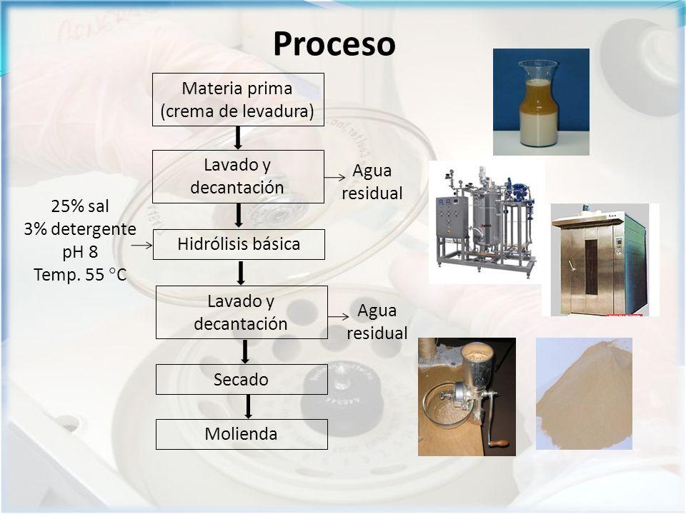 Materia prima (crema de levadura)