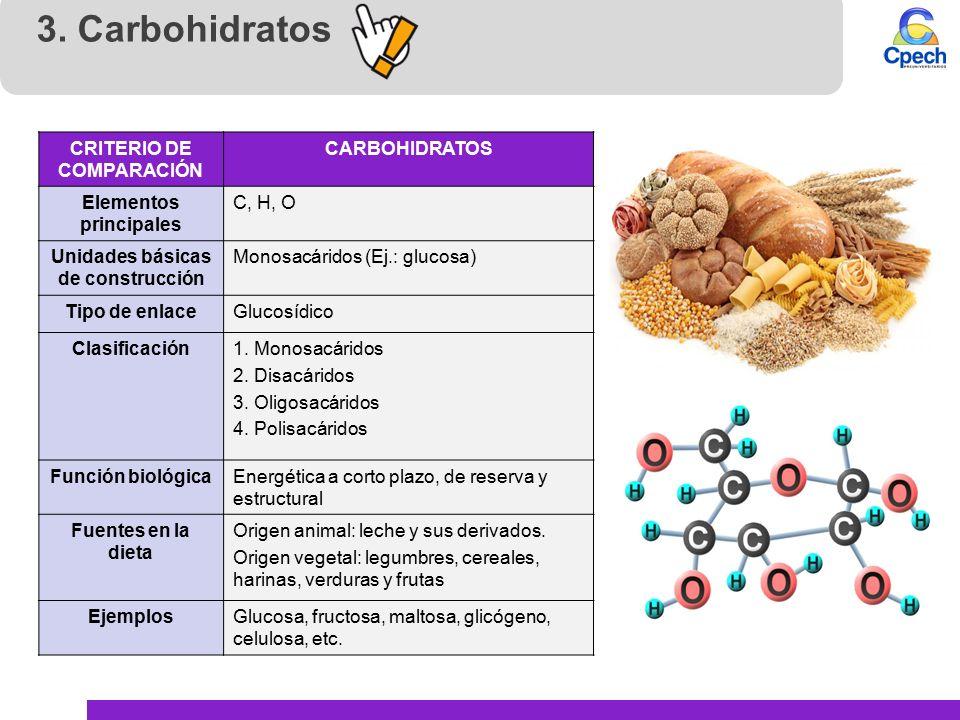 biomol 233 culas org 225 nicas carbohidratos y l 237 pidos ppt
