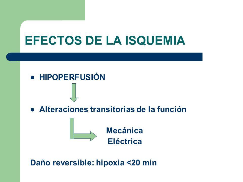 EFECTOS DE LA ISQUEMIA HIPOPERFUSIÓN