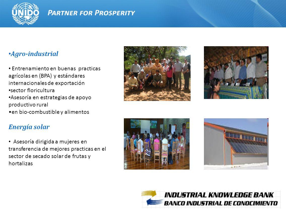 Agro-industrial Energía solar