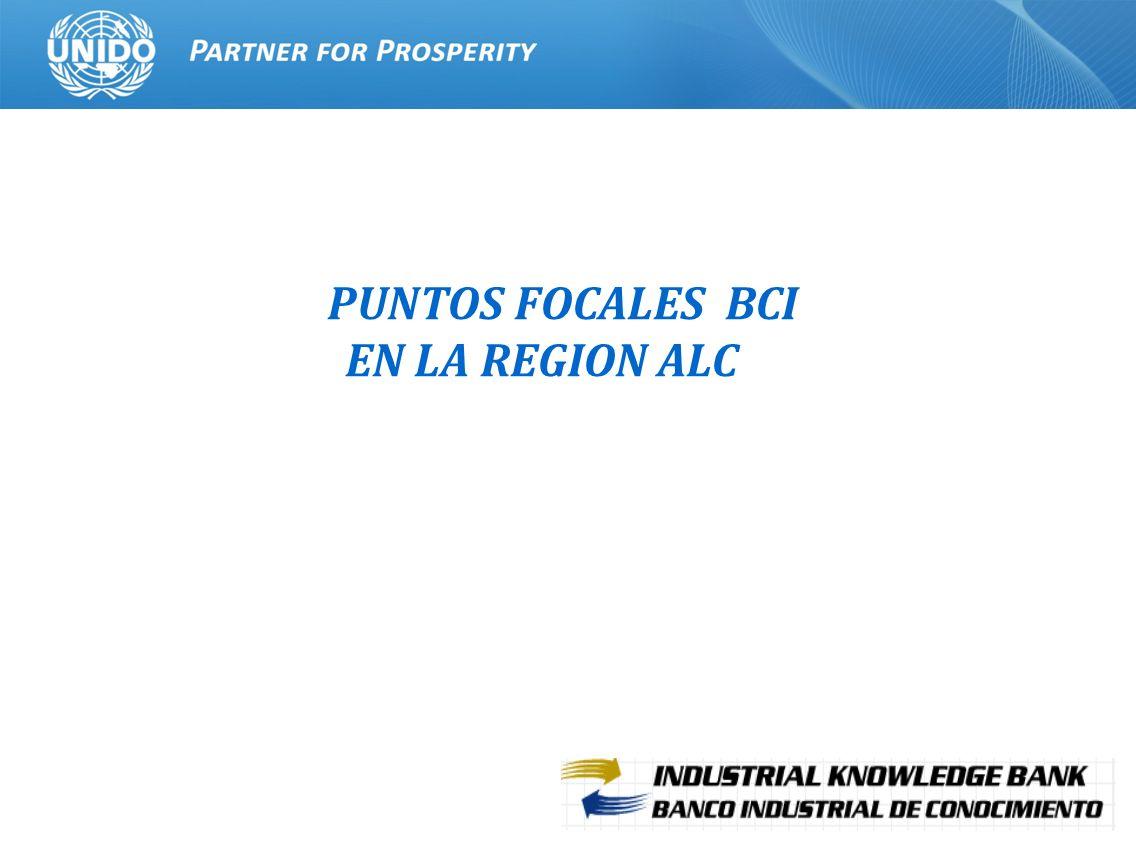 PUNTOS FOCALES BCI EN LA REGION ALC
