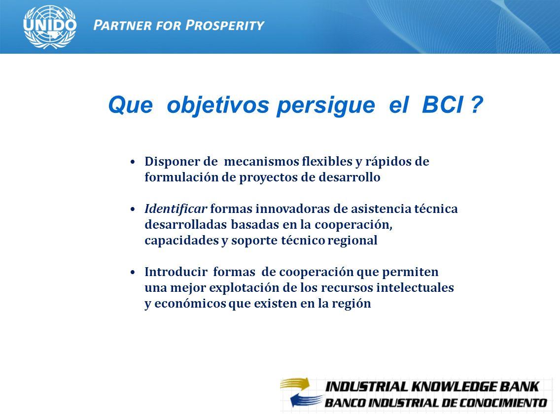 Que objetivos persigue el BCI