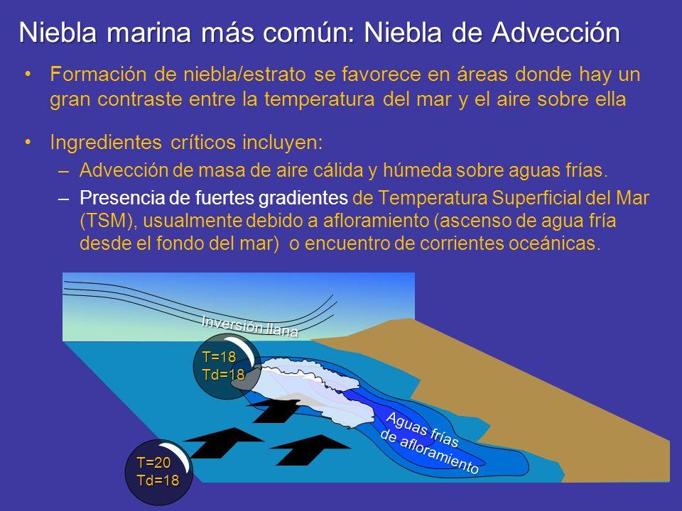 Niebla marina más común: Niebla de Advección