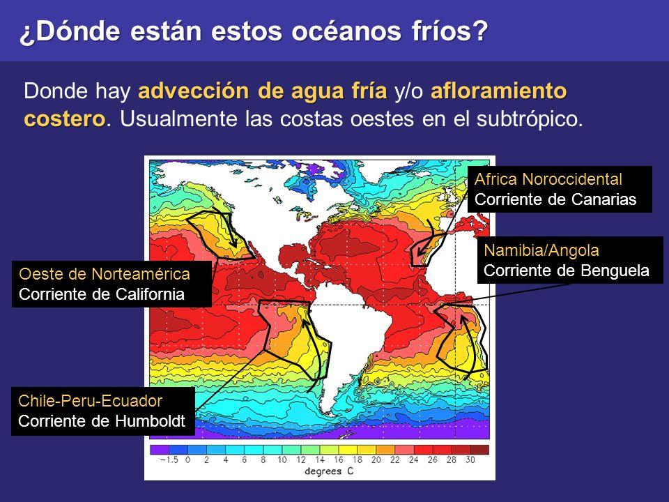 ¿Dónde están estos océanos fríos