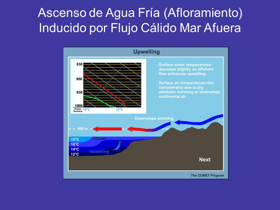 Ascenso de Agua Fría (Afloramiento) Inducido por Flujo Cálido Mar Afuera