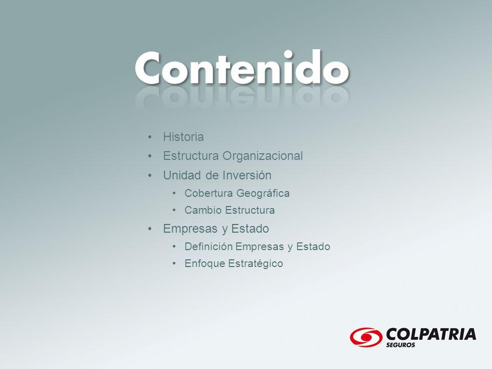 Estructura Organizacional Unidad de Inversión