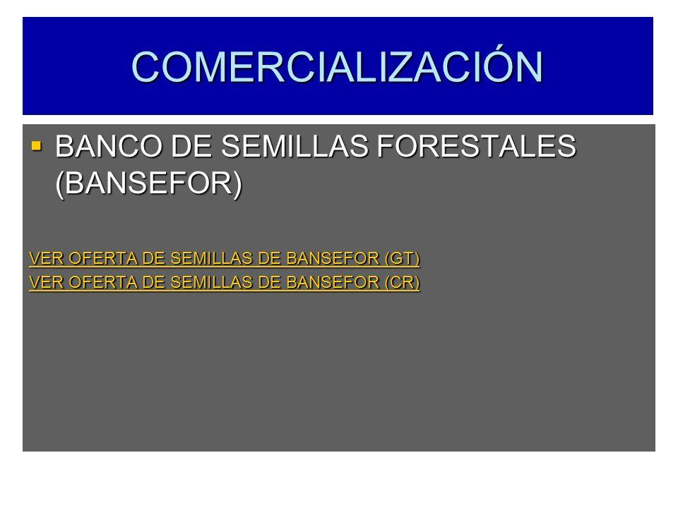COMERCIALIZACIÓN BANCO DE SEMILLAS FORESTALES (BANSEFOR)