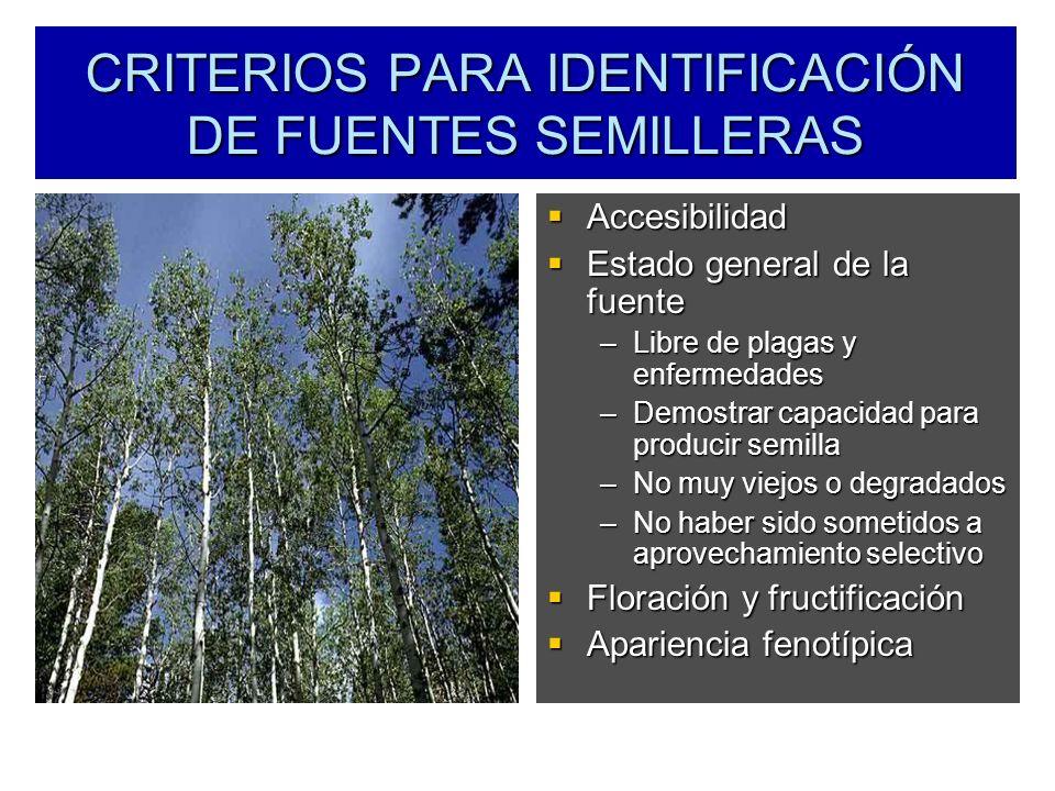 CRITERIOS PARA IDENTIFICACIÓN DE FUENTES SEMILLERAS