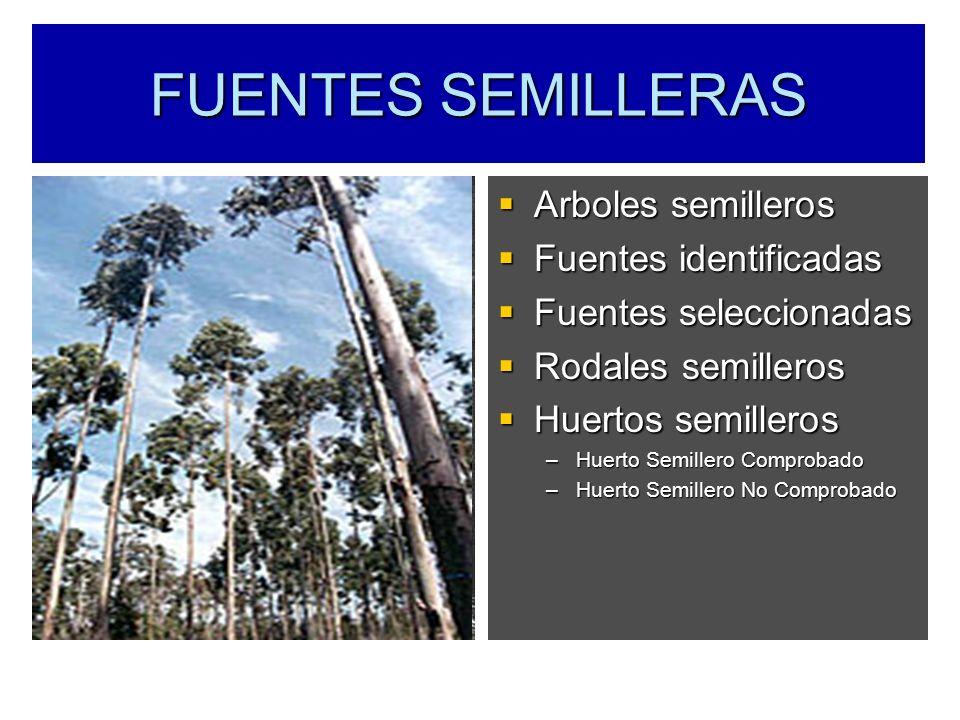 FUENTES SEMILLERAS Arboles semilleros Fuentes identificadas