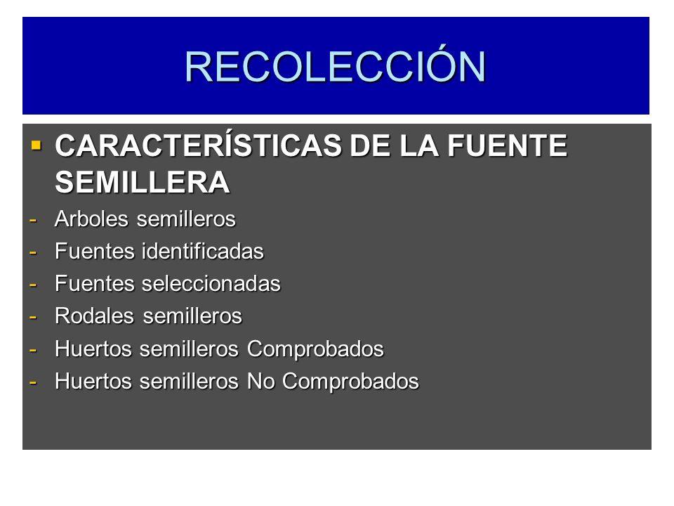 RECOLECCIÓN CARACTERÍSTICAS DE LA FUENTE SEMILLERA Arboles semilleros