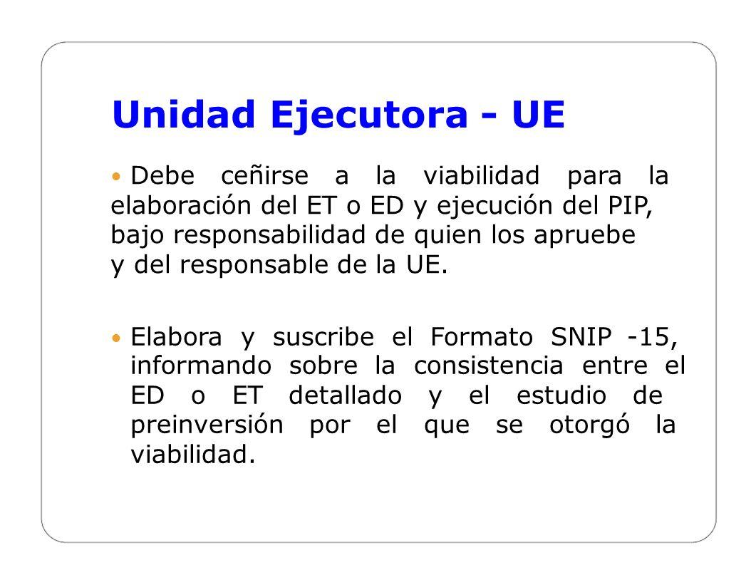 Unidad Ejecutora - UE