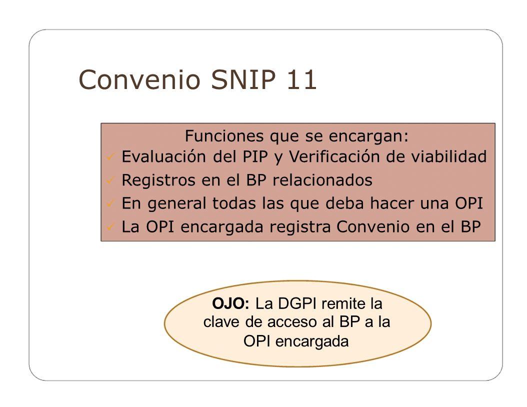 Convenio SNIP 11 OJO: La DGPI remite la Funciones que se encargan:
