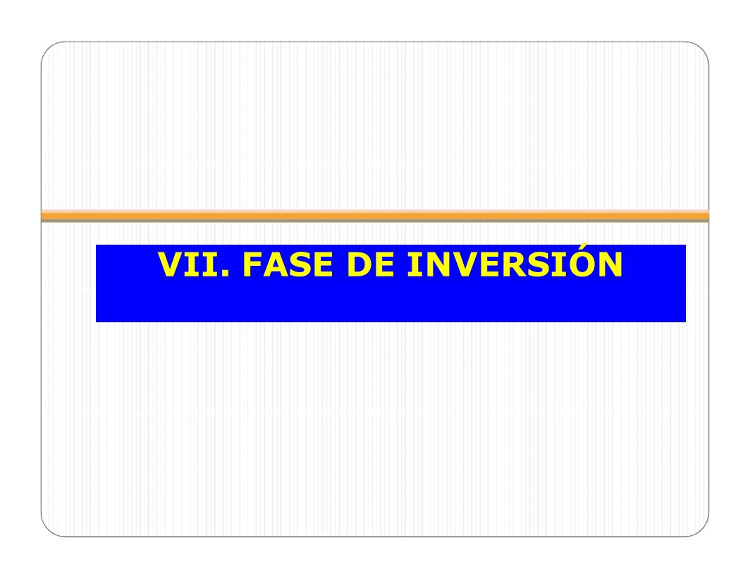 VII. FASE DE INVERSIÓN CELAP