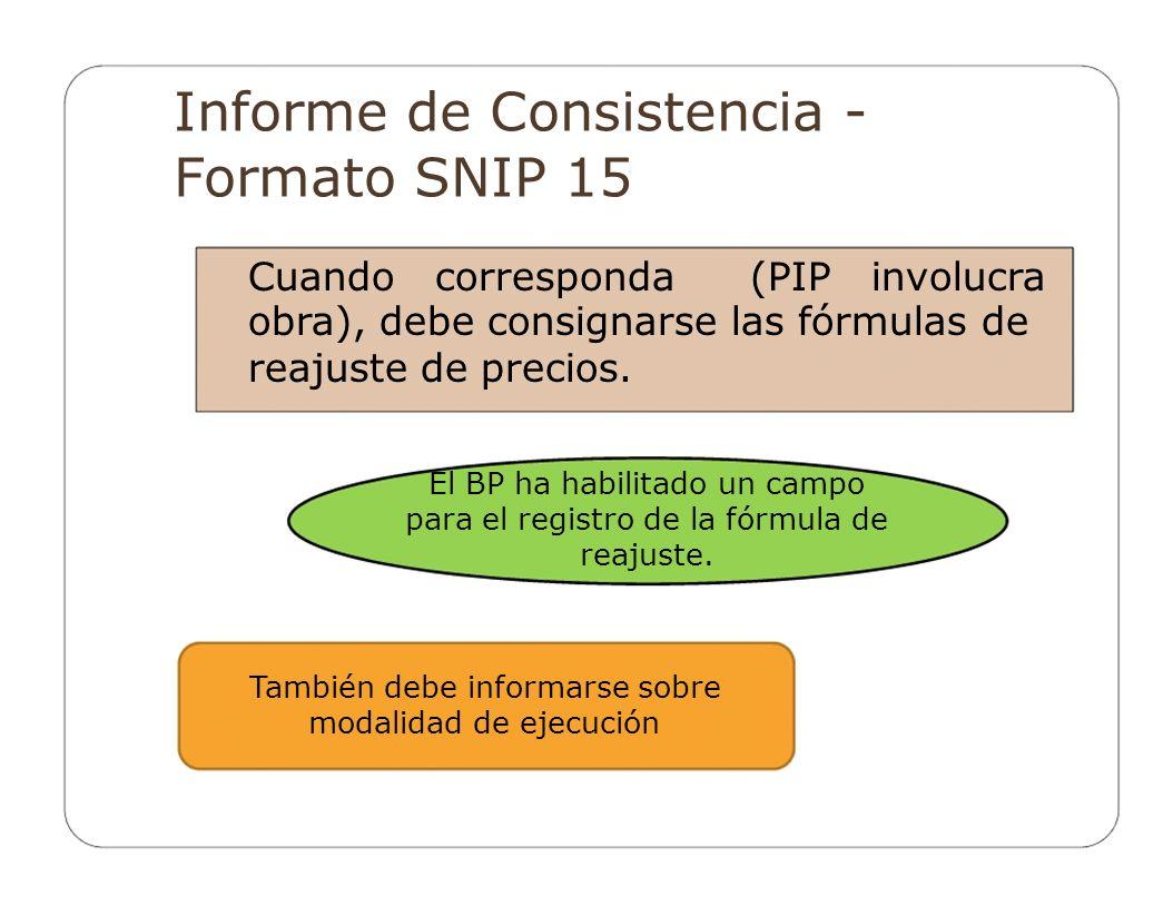 Informe de Consistencia - Formato SNIP 15