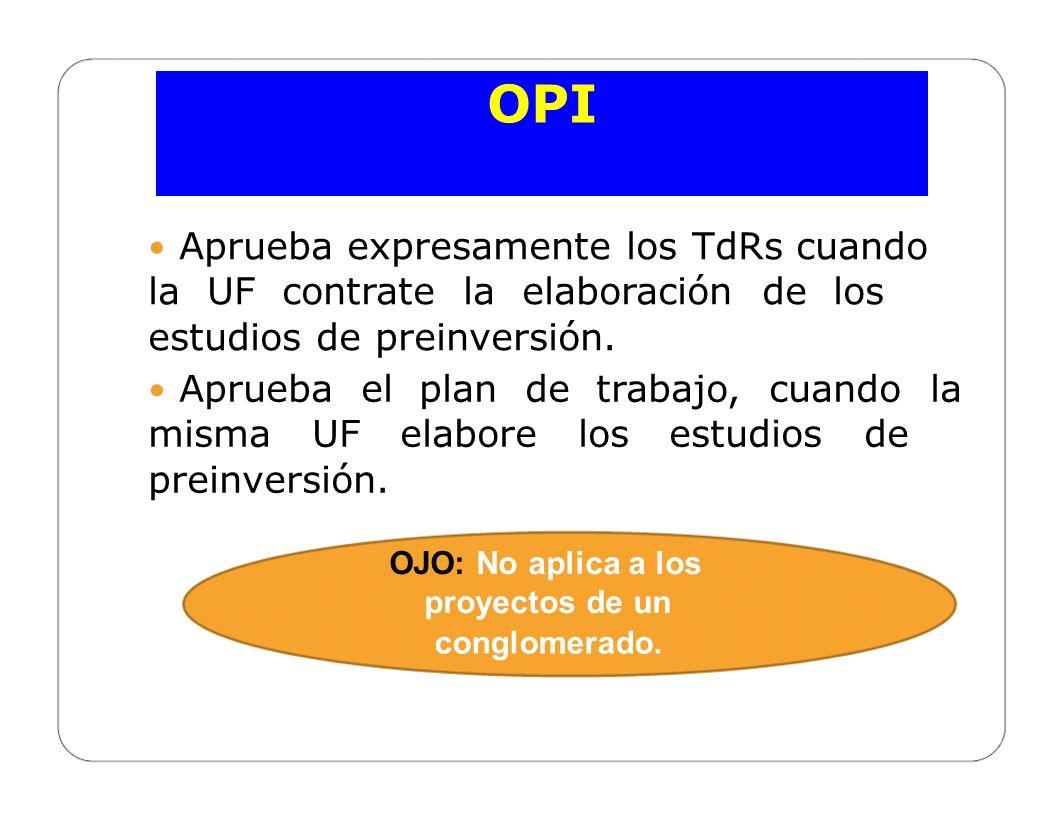 OPI OJO: No aplica a los proyectos de un conglomerado.