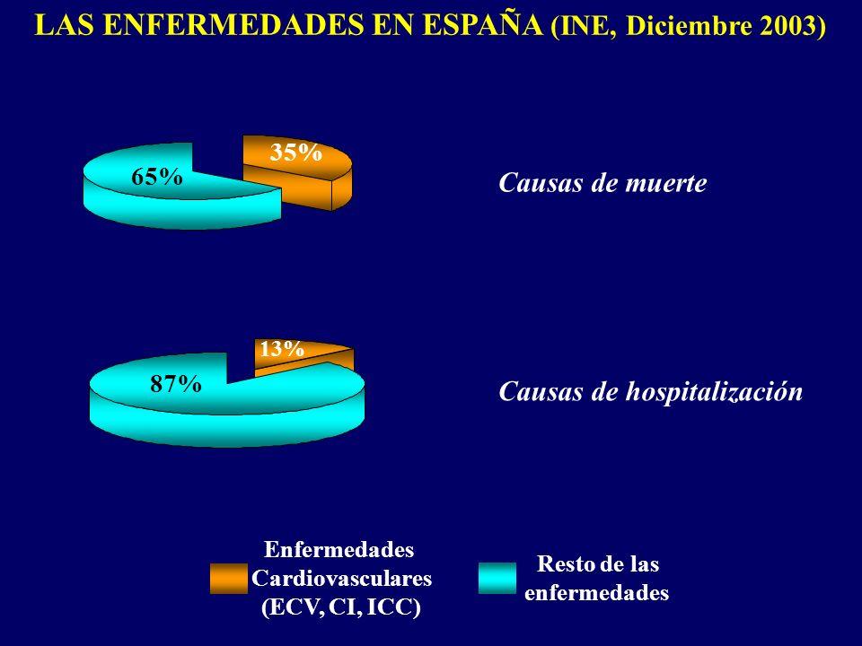 LAS ENFERMEDADES EN ESPAÑA (INE, Diciembre 2003)