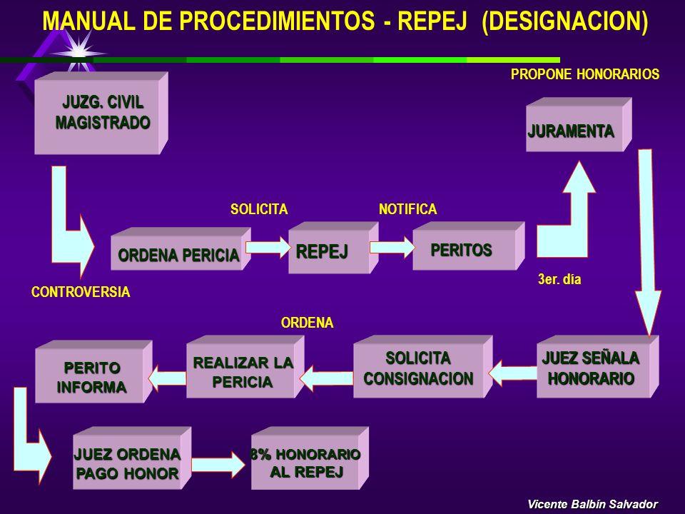 MANUAL DE PROCEDIMIENTOS - REPEJ (DESIGNACION)