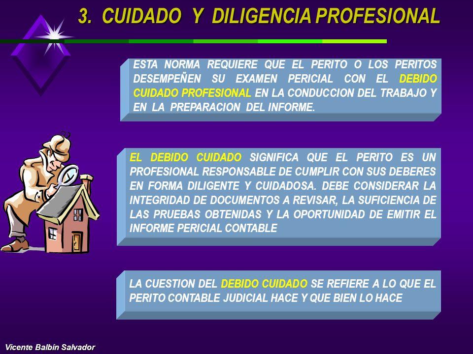 3. CUIDADO Y DILIGENCIA PROFESIONAL