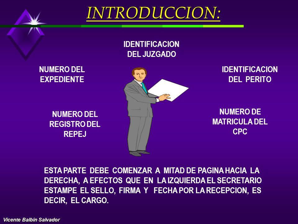 INTRODUCCION: IDENTIFICACION DEL JUZGADO NUMERO DEL EXPEDIENTE