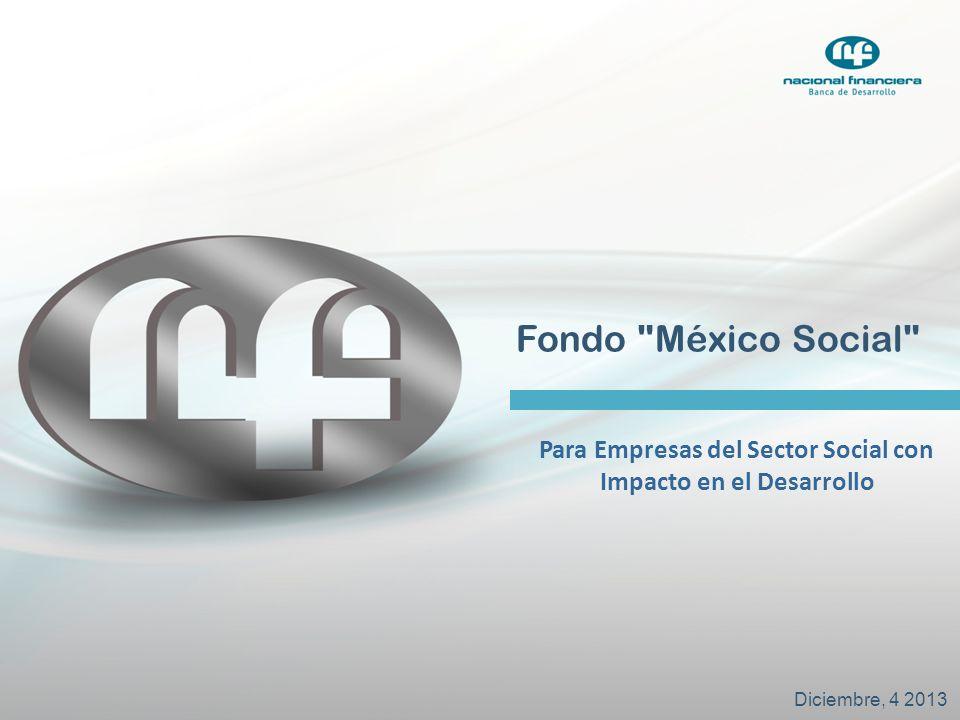 Para Empresas del Sector Social con Impacto en el Desarrollo
