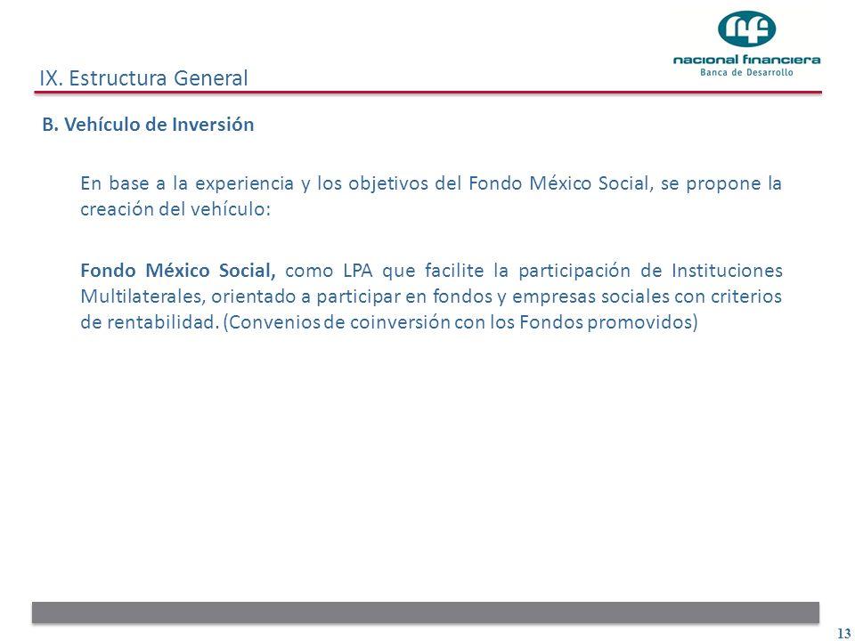 IX. Estructura General B. Vehículo de Inversión