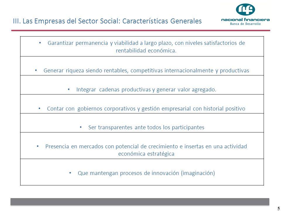 III. Las Empresas del Sector Social: Características Generales