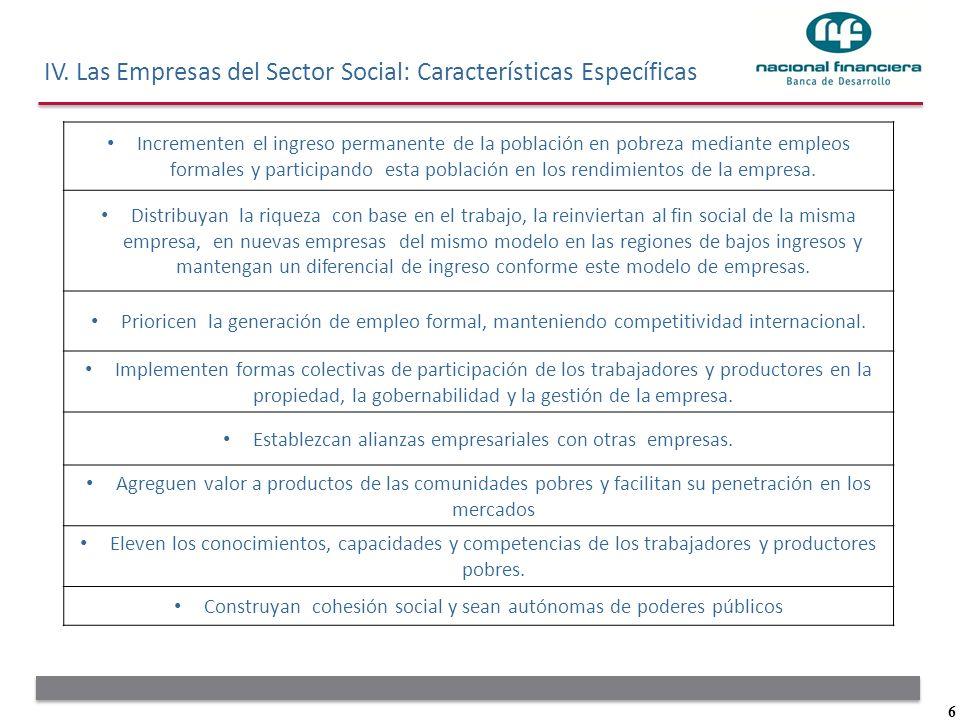 IV. Las Empresas del Sector Social: Características Específicas
