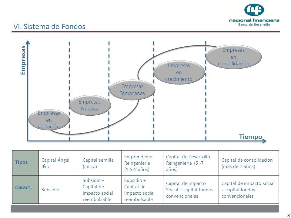 VI. Sistema de Fondos Empresas Tiempo Empresas en consolidación