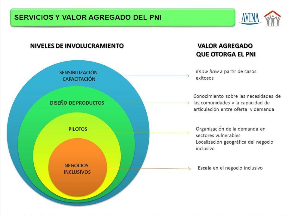 SERVICIOS Y VALOR AGREGADO DEL PNI