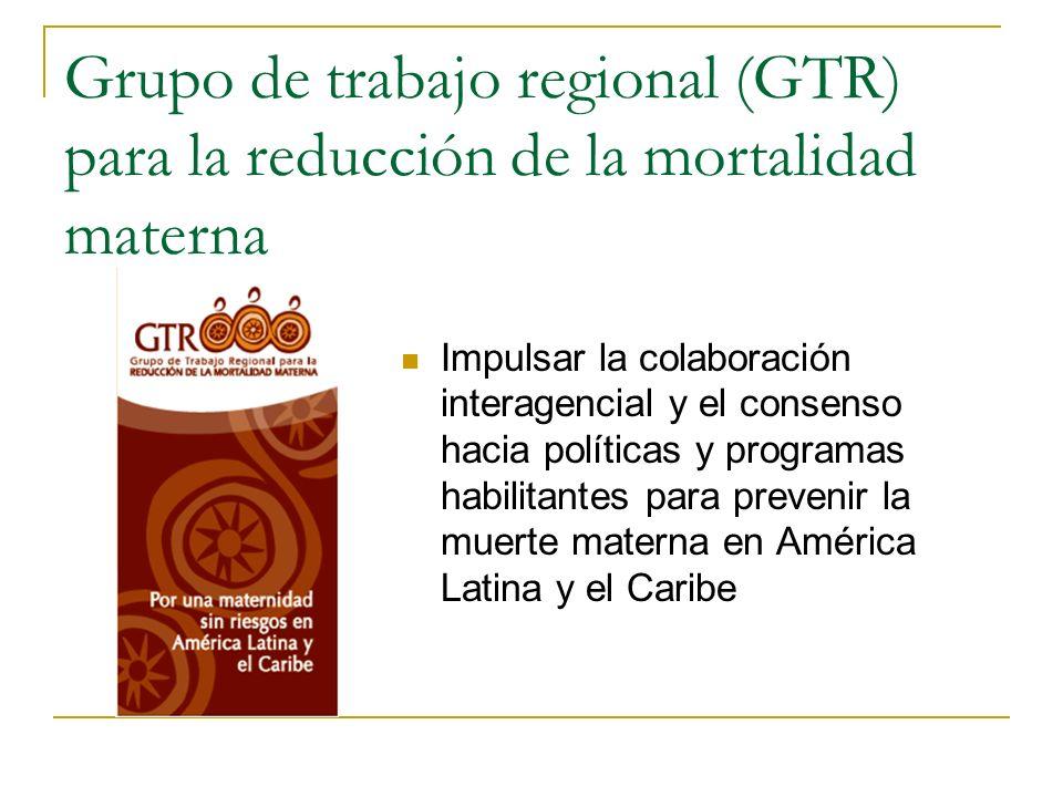 Grupo de trabajo regional (GTR) para la reducción de la mortalidad materna