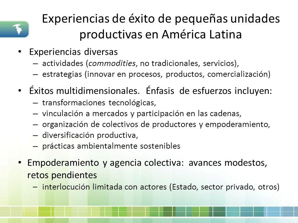 Experiencias de éxito de pequeñas unidades productivas en América Latina